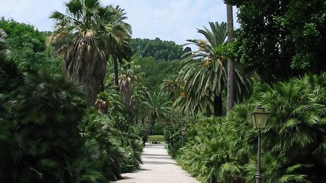 Jardín Botánico de Roma | Orto Botanico