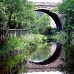 Paseo junto al Water of Leith